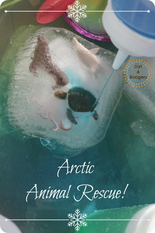 Arctic Animal Rescue - A great water activity for all kids!