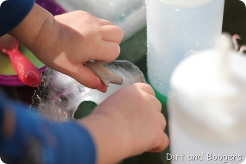 Arctic Animal Rescue - A great water activity for all kids
